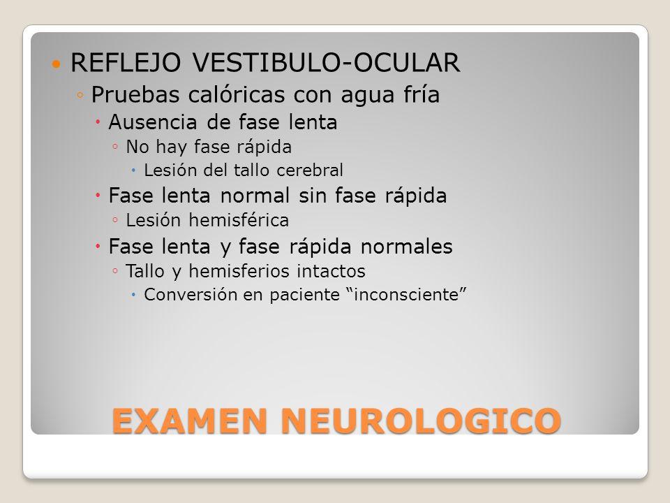 EXAMEN NEUROLOGICO REFLEJO VESTIBULO-OCULAR Pruebas calóricas con agua fría Ausencia de fase lenta No hay fase rápida Lesión del tallo cerebral Fase l