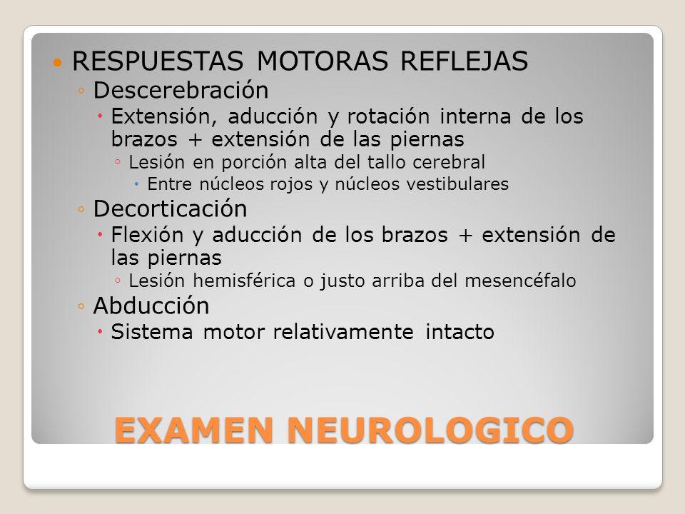 EXAMEN NEUROLOGICO RESPUESTAS MOTORAS REFLEJAS Descerebración Extensión, aducción y rotación interna de los brazos + extensión de las piernas Lesión e
