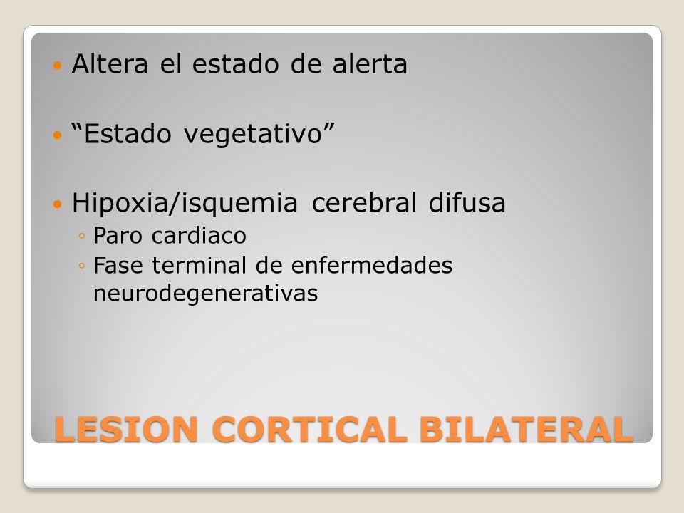LESION CORTICAL BILATERAL Altera el estado de alerta Estado vegetativo Hipoxia/isquemia cerebral difusa Paro cardiaco Fase terminal de enfermedades ne