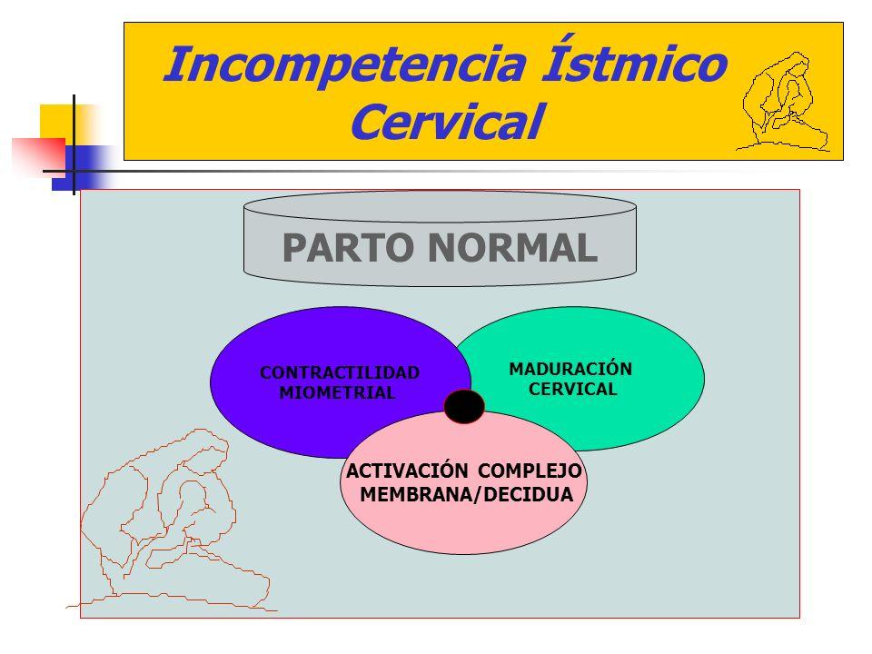 Incompetencia Ístmico Cervical PARTO NORMAL MADURACIÓN CERVICAL CONTRACTILIDAD MIOMETRIAL ACTIVACIÓN COMPLEJO MEMBRANA/DECIDUA