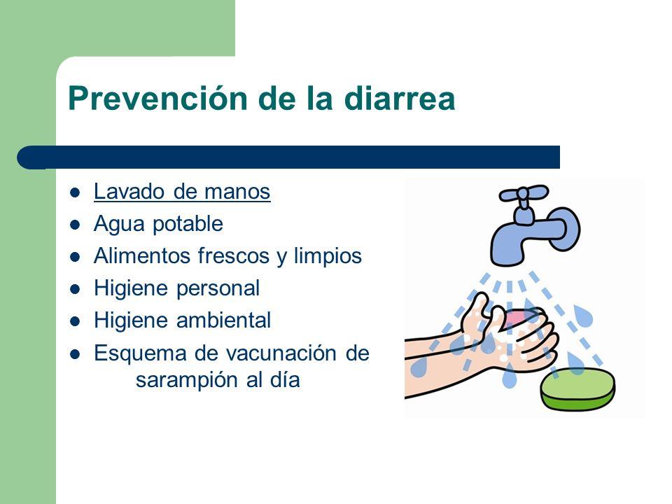 Prevención de la diarrea Lavado de manos Agua potable Alimentos frescos y limpios Higiene personal Higiene ambiental Esquema de vacunación de sarampió