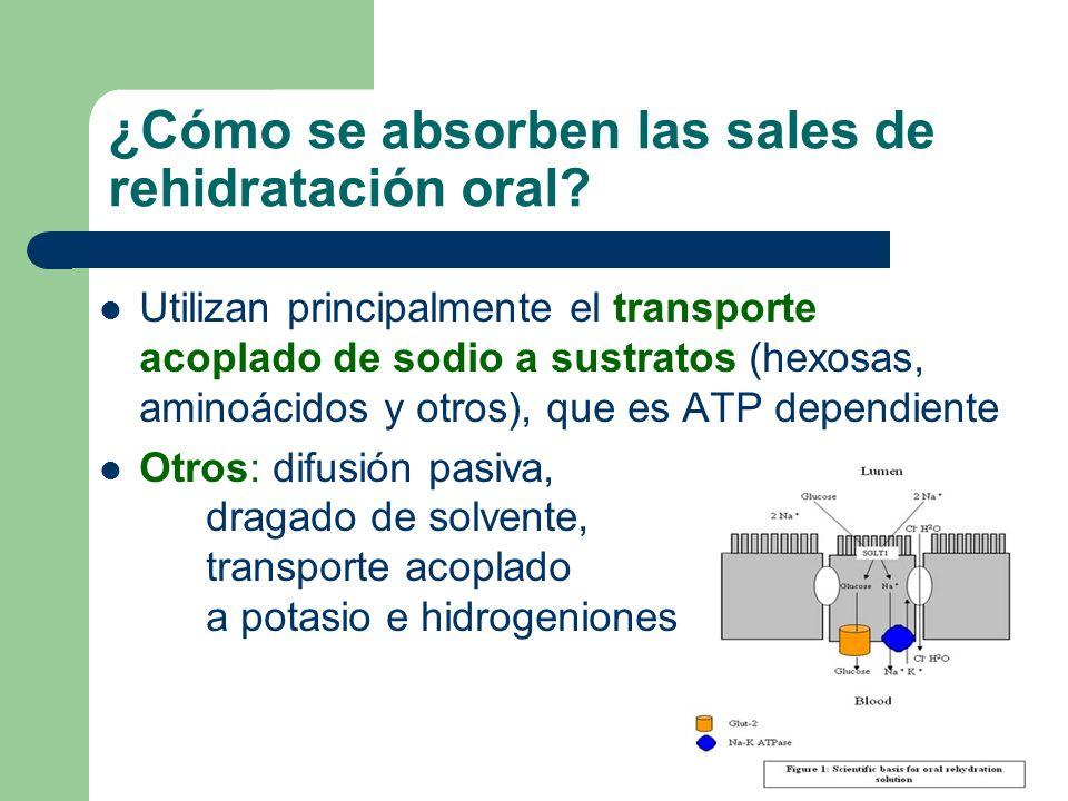 ¿Cómo se absorben las sales de rehidratación oral? Utilizan principalmente el transporte acoplado de sodio a sustratos (hexosas, aminoácidos y otros),