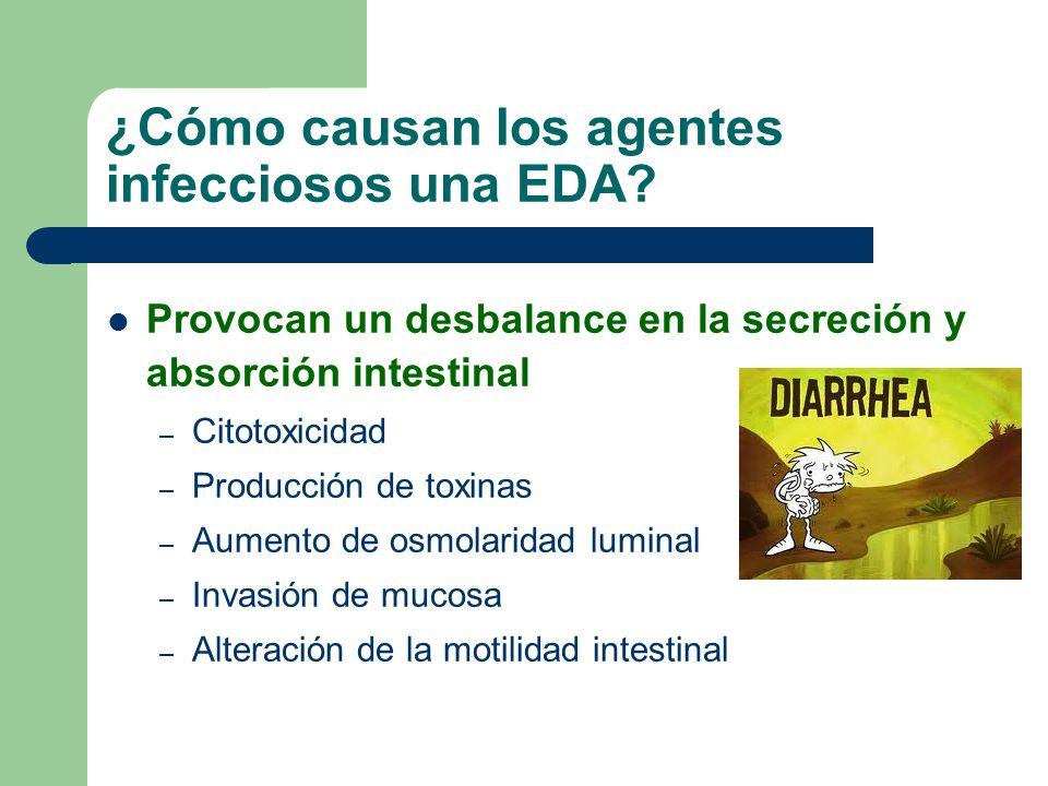 ¿Cómo causan los agentes infecciosos una EDA? Provocan un desbalance en la secreción y absorción intestinal – Citotoxicidad – Producción de toxinas –