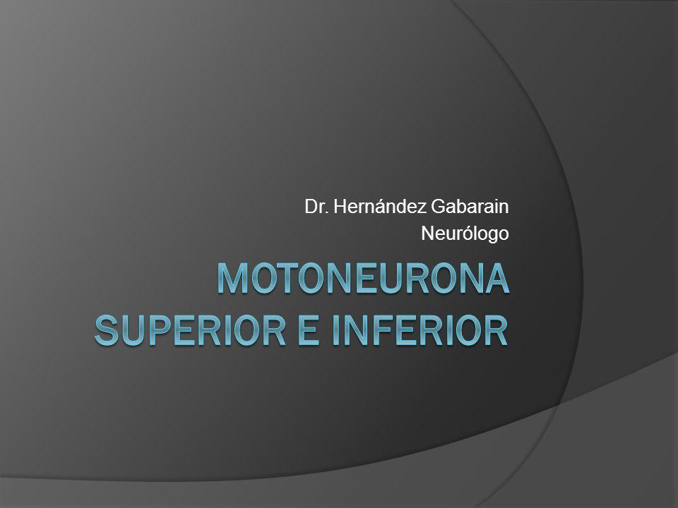 Dr. Hernández Gabarain Neurólogo