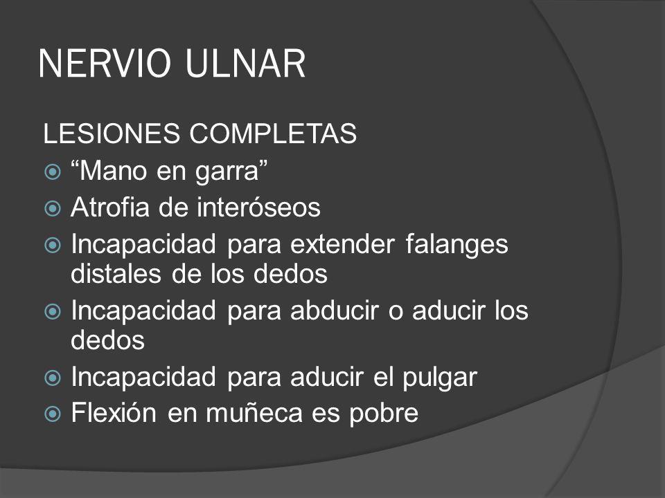 NERVIO ULNAR LESIONES COMPLETAS Mano en garra Atrofia de interóseos Incapacidad para extender falanges distales de los dedos Incapacidad para abducir