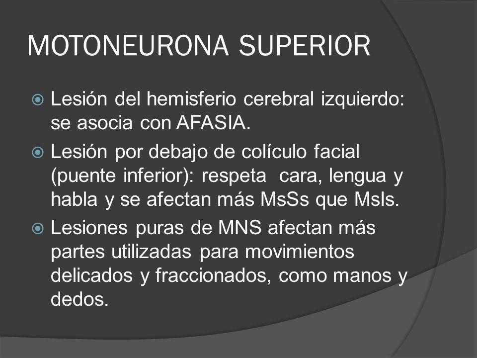 MOTONEURONA SUPERIOR Lesión del hemisferio cerebral izquierdo: se asocia con AFASIA. Lesión por debajo de colículo facial (puente inferior): respeta c