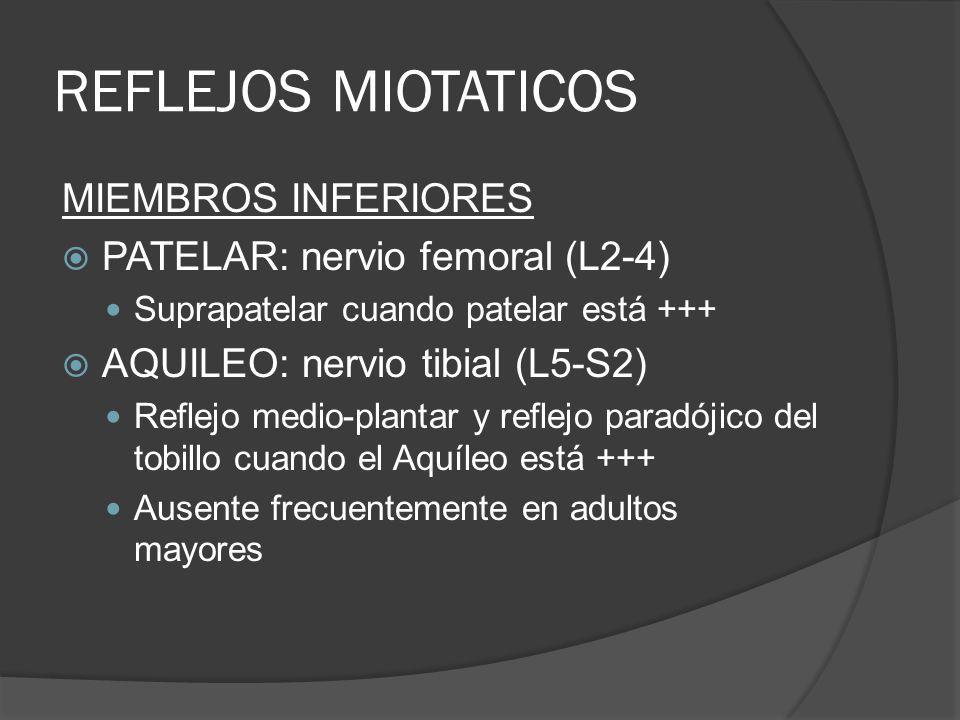 REFLEJOS MIOTATICOS MIEMBROS INFERIORES PATELAR: nervio femoral (L2-4) Suprapatelar cuando patelar está +++ AQUILEO: nervio tibial (L5-S2) Reflejo med