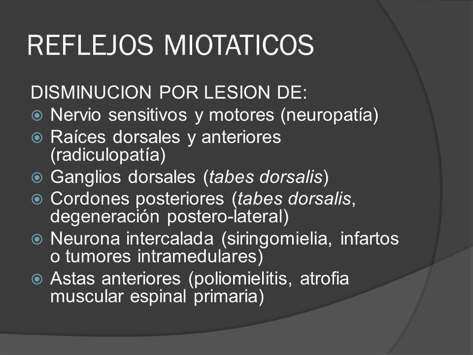 REFLEJOS MIOTATICOS DISMINUCION POR LESION DE: Nervio sensitivos y motores (neuropatía) Raíces dorsales y anteriores (radiculopatía) Ganglios dorsales