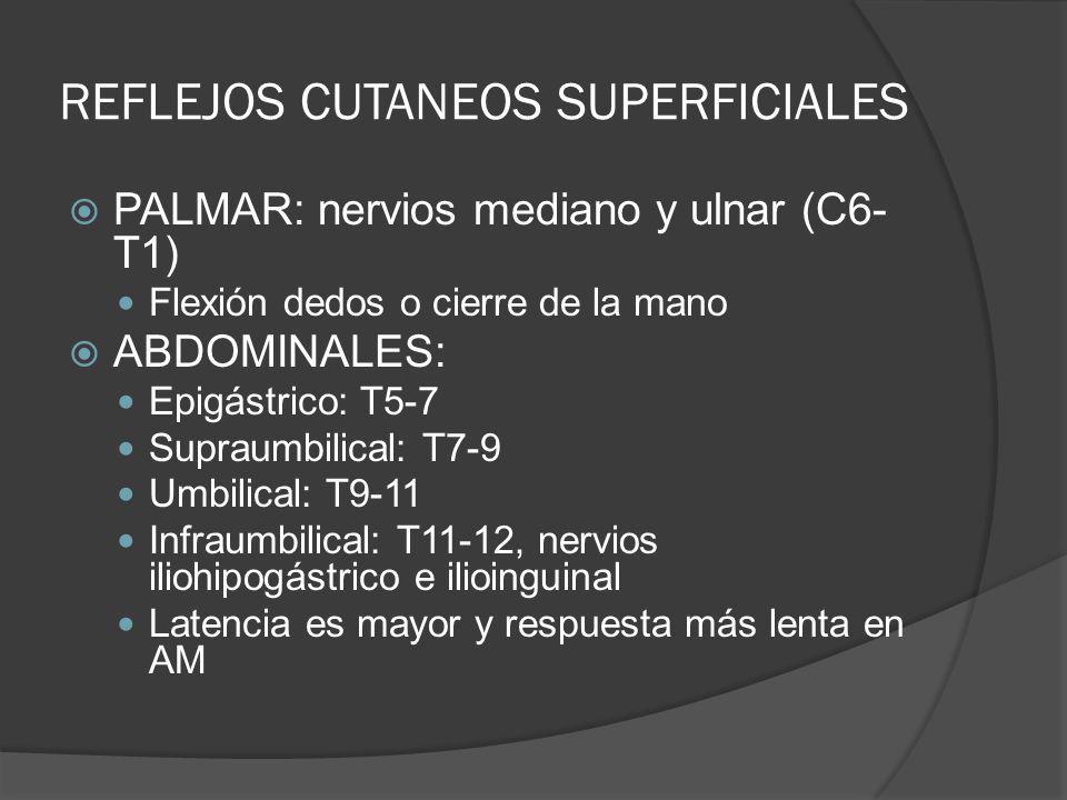 REFLEJOS CUTANEOS SUPERFICIALES PALMAR: nervios mediano y ulnar (C6- T1) Flexión dedos o cierre de la mano ABDOMINALES: Epigástrico: T5-7 Supraumbilic