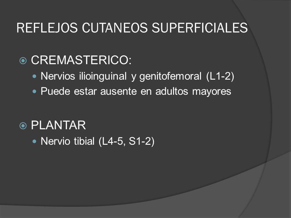 REFLEJOS CUTANEOS SUPERFICIALES CREMASTERICO: Nervios ilioinguinal y genitofemoral (L1-2) Puede estar ausente en adultos mayores PLANTAR Nervio tibial
