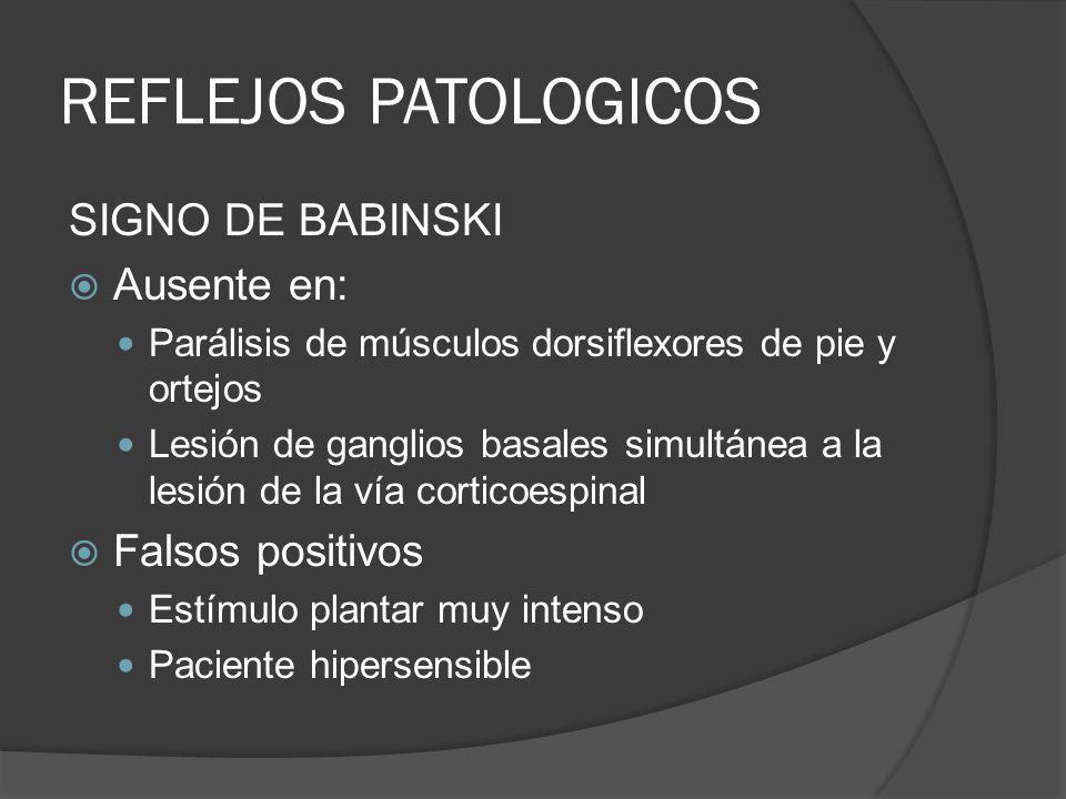 REFLEJOS PATOLOGICOS SIGNO DE BABINSKI Ausente en: Parálisis de músculos dorsiflexores de pie y ortejos Lesión de ganglios basales simultánea a la les