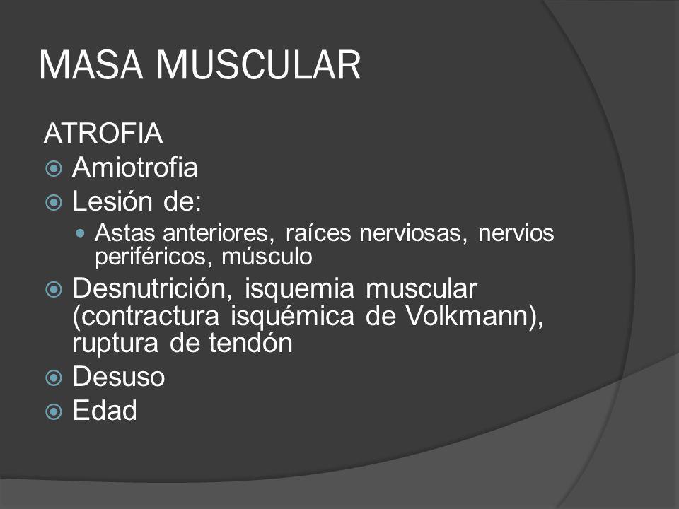 MASA MUSCULAR ATROFIA Amiotrofia Lesión de: Astas anteriores, raíces nerviosas, nervios periféricos, músculo Desnutrición, isquemia muscular (contract