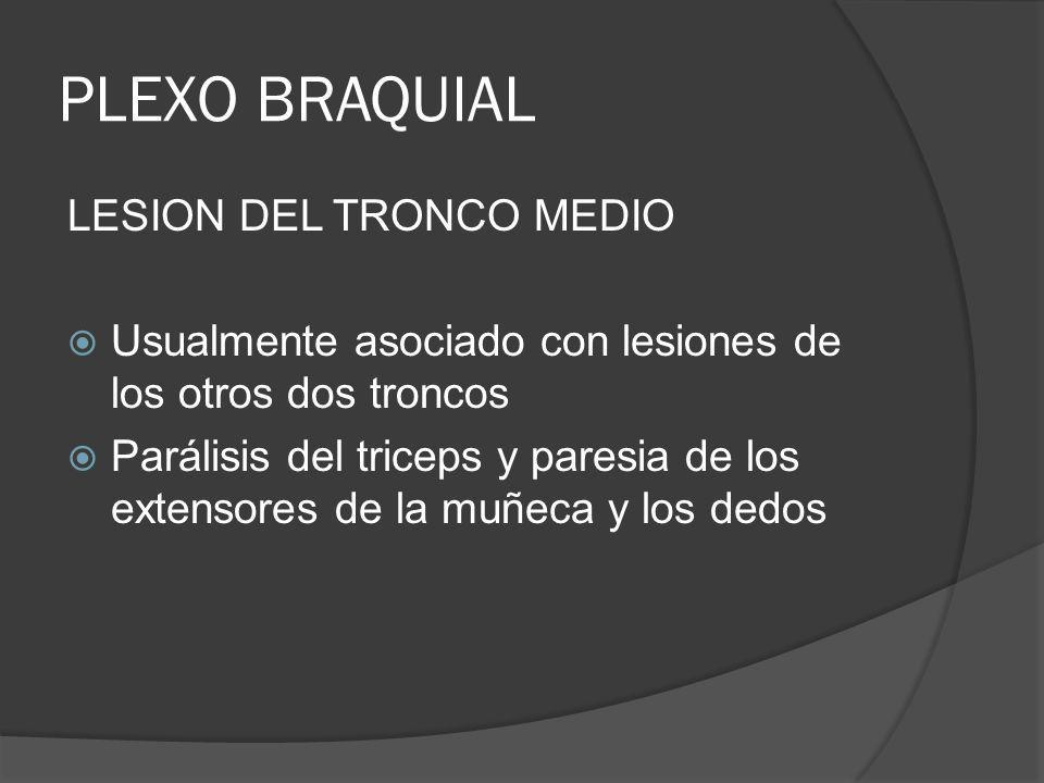 PLEXO BRAQUIAL LESION DEL TRONCO MEDIO Usualmente asociado con lesiones de los otros dos troncos Parálisis del triceps y paresia de los extensores de