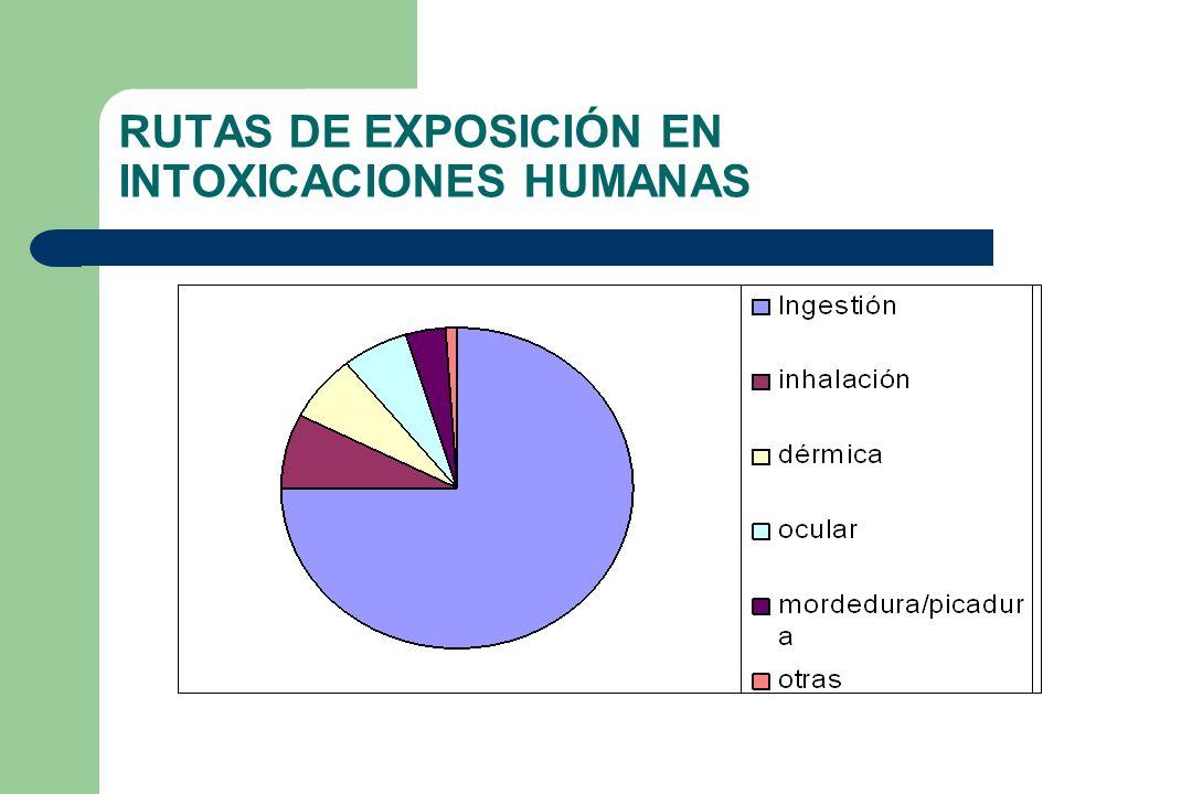 RUTAS DE EXPOSICIÓN EN INTOXICACIONES HUMANAS