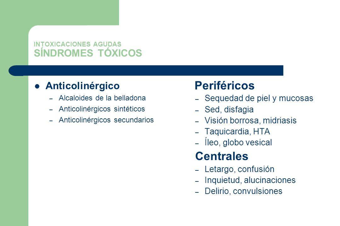 INTOXICACIONES AGUDAS SÍNDROMES TÓXICOS Anticolinérgico – Alcaloides de la belladona – Anticolinérgicos sintéticos – Anticolinérgicos secundarios Peri
