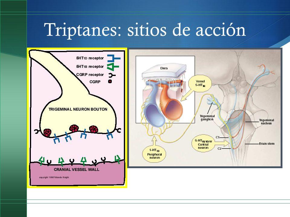 Triptanes: sitios de acción