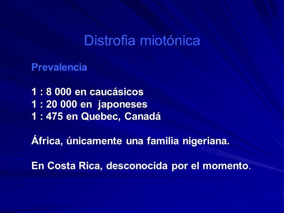 Distrofia miotónica Prevalencia 1 : 8 000 en caucásicos 1 : 20 000 en japoneses 1 : 475 en Quebec, Canadá África, únicamente una familia nigeriana. En