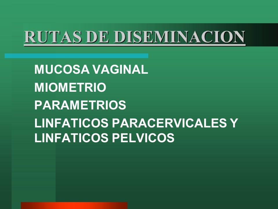 RUTAS DE DISEMINACION MUCOSA VAGINAL MIOMETRIO PARAMETRIOS LINFATICOS PARACERVICALES Y LINFATICOS PELVICOS