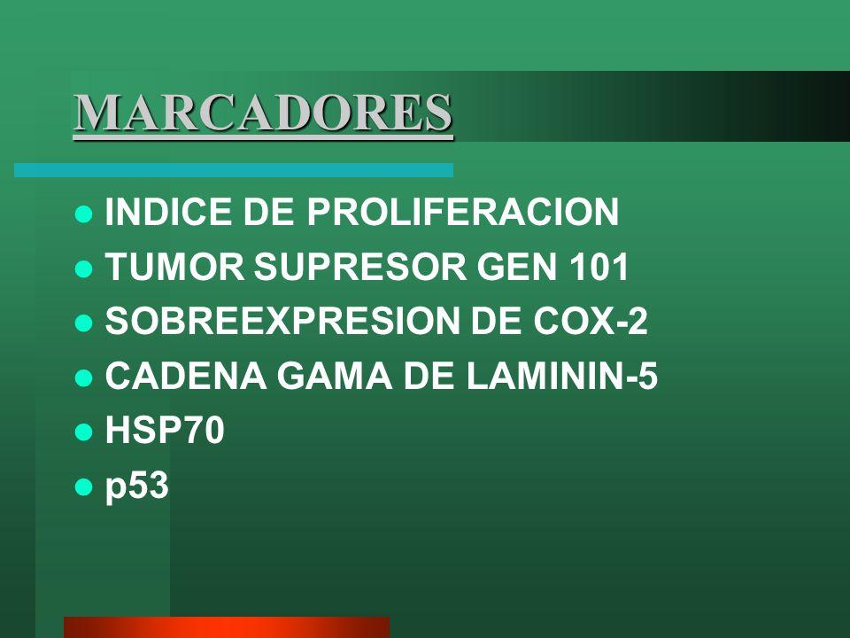MARCADORES INDICE DE PROLIFERACION TUMOR SUPRESOR GEN 101 SOBREEXPRESION DE COX-2 CADENA GAMA DE LAMININ-5 HSP70 p53
