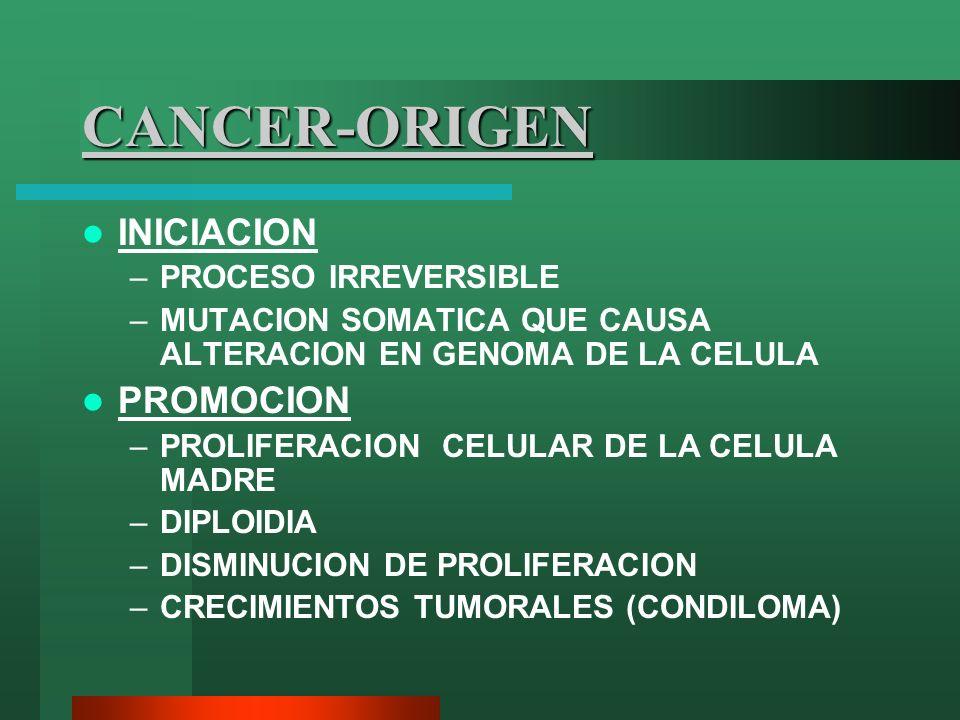 CANCER-ORIGEN INICIACION –PROCESO IRREVERSIBLE –MUTACION SOMATICA QUE CAUSA ALTERACION EN GENOMA DE LA CELULA PROMOCION –PROLIFERACION CELULAR DE LA C