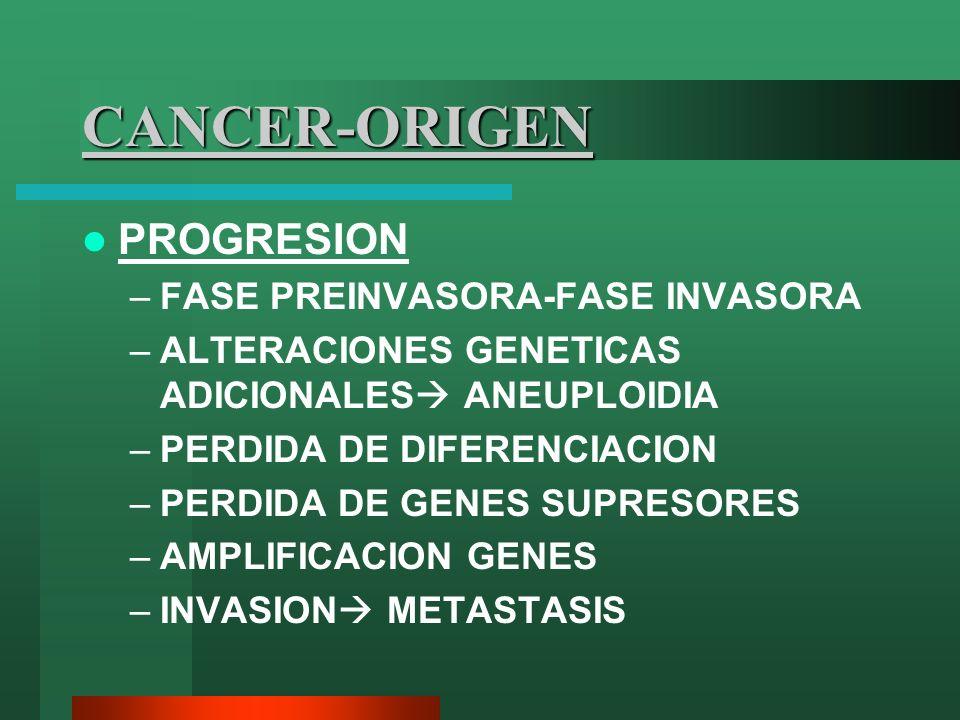 CANCER-ORIGEN PROGRESION –FASE PREINVASORA-FASE INVASORA –ALTERACIONES GENETICAS ADICIONALES ANEUPLOIDIA –PERDIDA DE DIFERENCIACION –PERDIDA DE GENES
