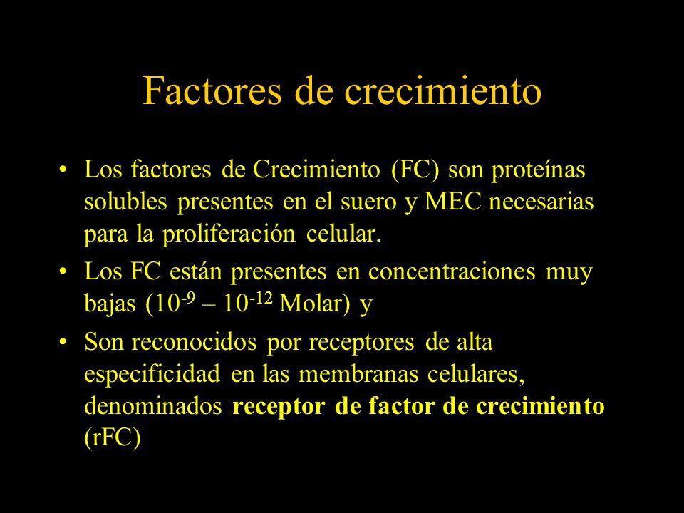 Factores de crecimiento Los factores de Crecimiento (FC) son proteínas solubles presentes en el suero y MEC necesarias para la proliferación celular.