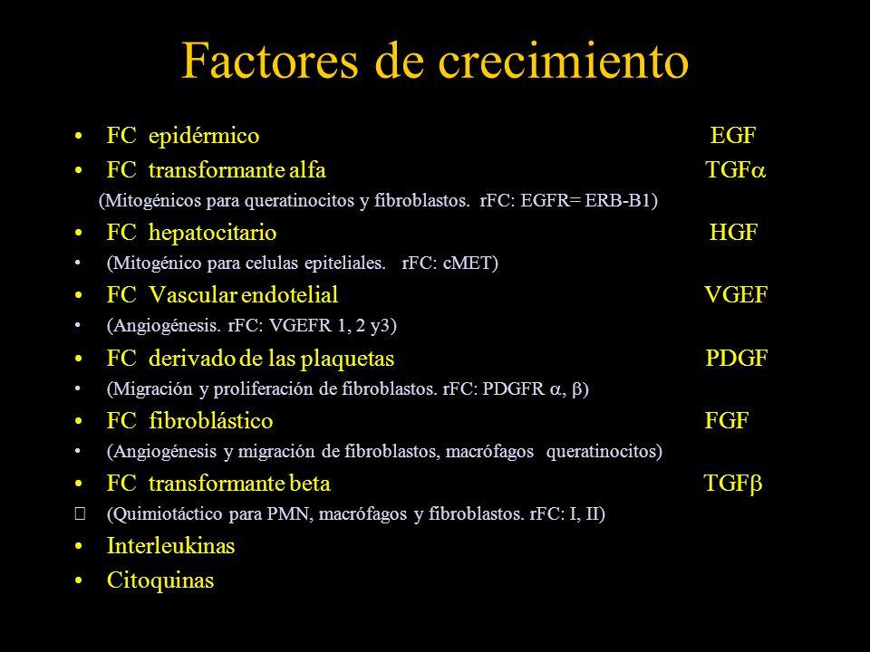 Factores de crecimiento FC epidérmico EGF FC transformante alfa TGF (Mitogénicos para queratinocitos y fibroblastos. rFC: EGFR= ERB-B1) FC hepatocitar