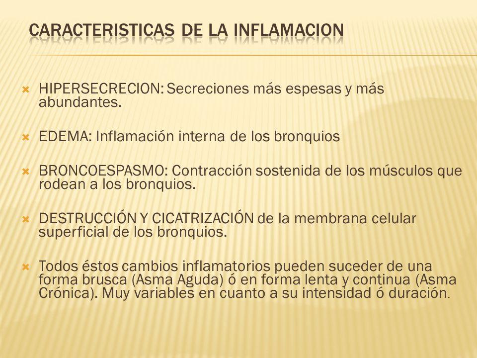 HIPERSECRECION: Secreciones más espesas y más abundantes. EDEMA: Inflamación interna de los bronquios BRONCOESPASMO: Contracción sostenida de los músc
