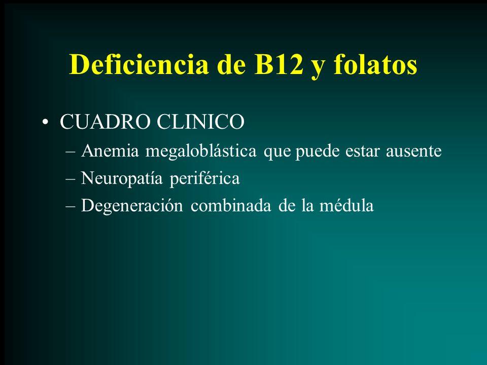Deficiencia de B12 y folatos CUADRO CLINICO –Anemia megaloblástica que puede estar ausente –Neuropatía periférica –Degeneración combinada de la médula