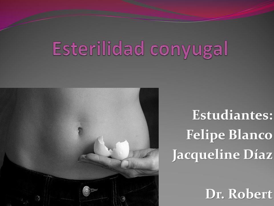 Estudiantes: Felipe Blanco Jacqueline Díaz Dr. Robert