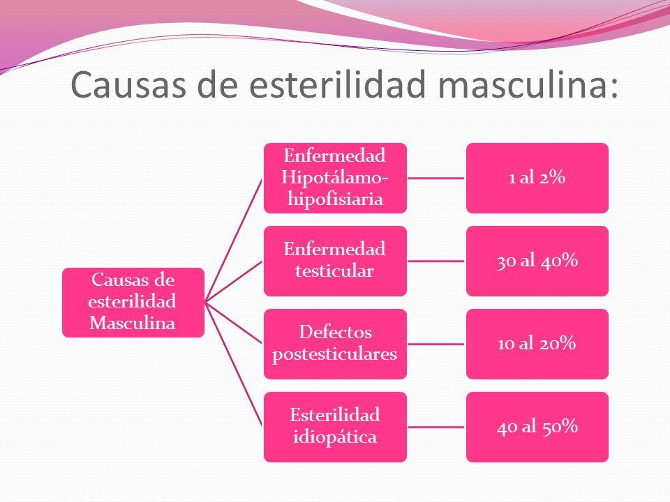 Causas de esterilidad masculina: Causas de esterilidad Masculina Enfermedad Hipotálamo- hipofisiaria 1 al 2% Enfermedad testicular 30 al 40% Defectos