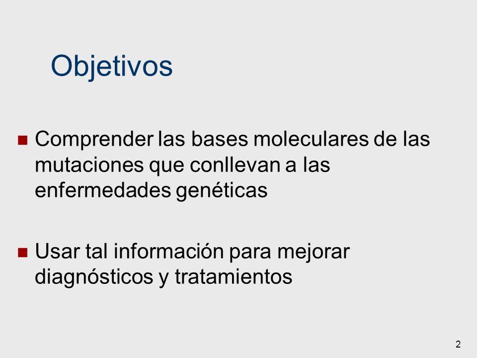 2 Objetivos Comprender las bases moleculares de las mutaciones que conllevan a las enfermedades genéticas Usar tal información para mejorar diagnóstic