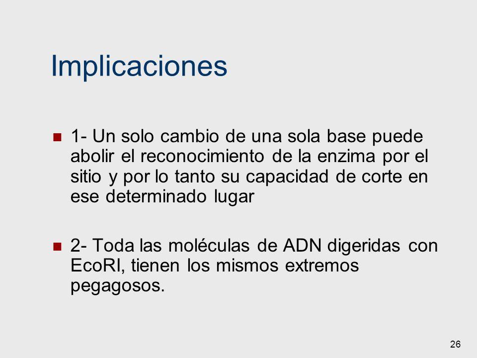 26 Implicaciones 1- Un solo cambio de una sola base puede abolir el reconocimiento de la enzima por el sitio y por lo tanto su capacidad de corte en e