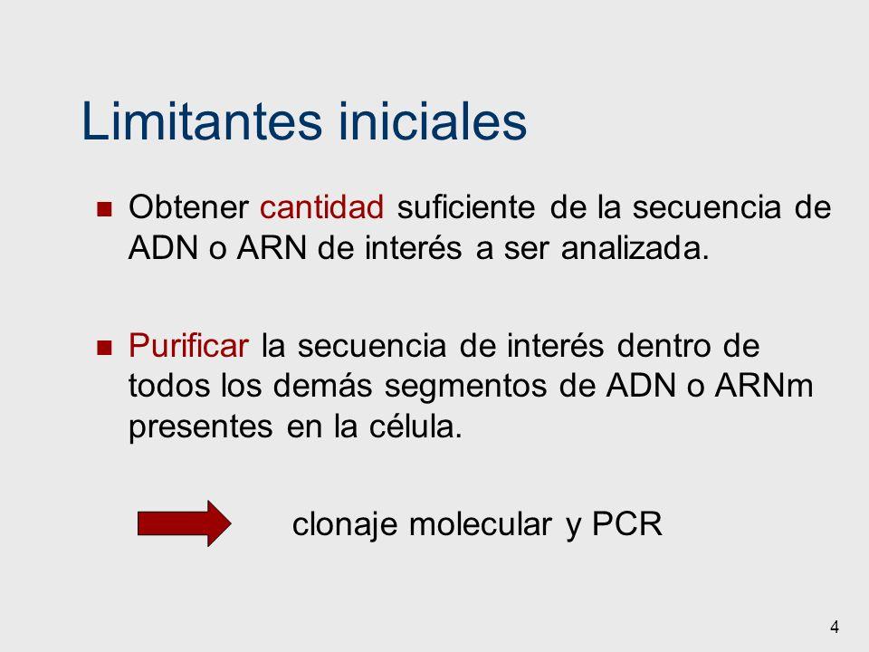4 Limitantes iniciales Obtener cantidad suficiente de la secuencia de ADN o ARN de interés a ser analizada. Purificar la secuencia de interés dentro d