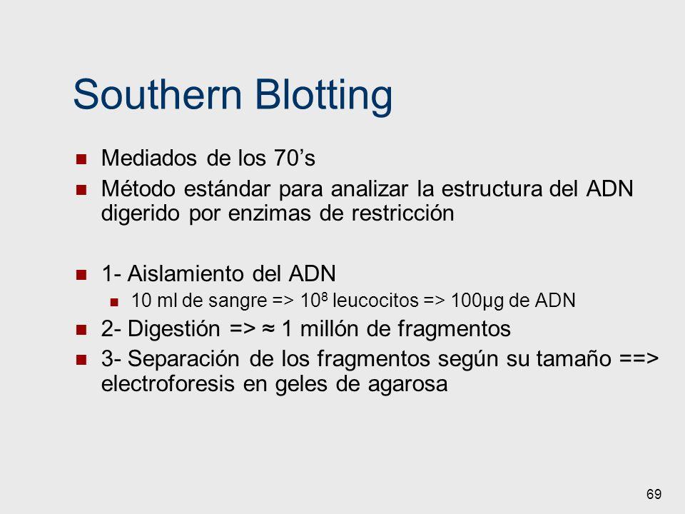 69 Southern Blotting Mediados de los 70s Método estándar para analizar la estructura del ADN digerido por enzimas de restricción 1- Aislamiento del AD