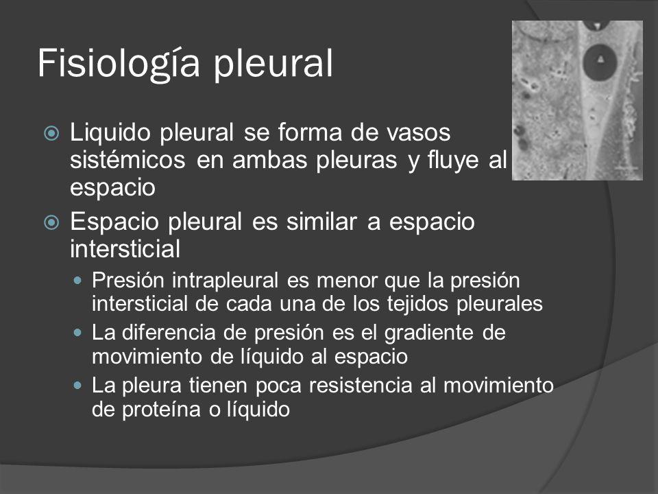 Fisiología pleural Liquido pleural se forma de vasos sistémicos en ambas pleuras y fluye al espacio Espacio pleural es similar a espacio intersticial