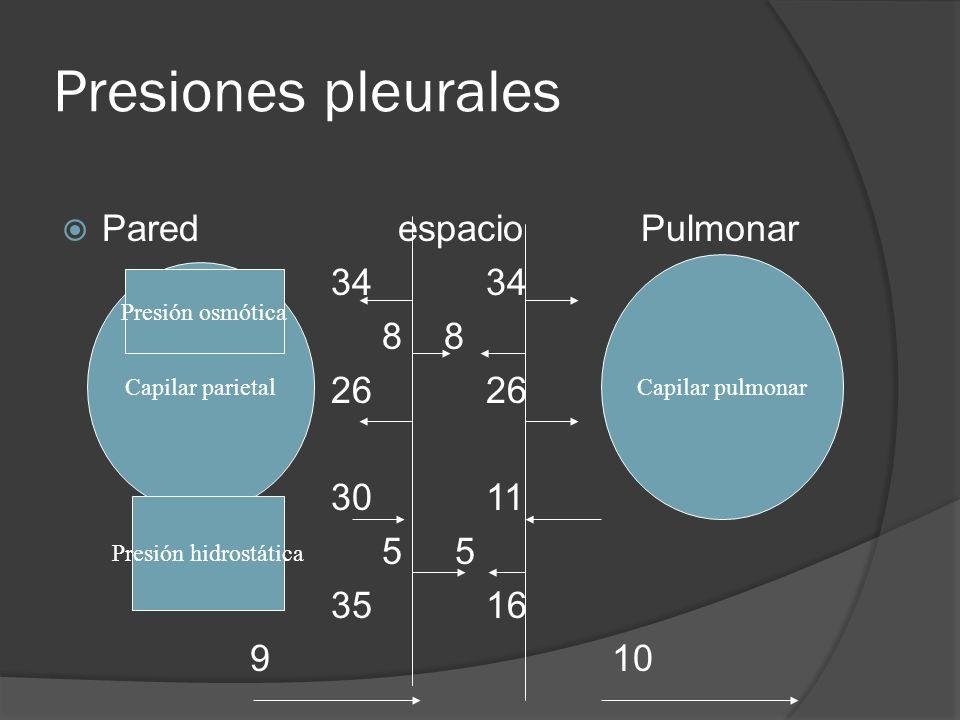 Presiones pleurales Pared espacio Pulmonar 34 34 8 8 26 26 30 11 5 5 35 16 9 10 Capilar parietal Presión osmótica Presión hidrostática Capilar pulmona