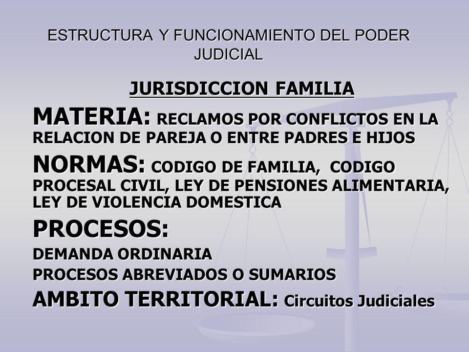 ESTRUCTURA Y FUNCIONAMIENTO DEL PODER JUDICIAL JURISDICCION FAMILIA MATERIA: RECLAMOS POR CONFLICTOS EN LA RELACION DE PAREJA O ENTRE PADRES E HIJOS N