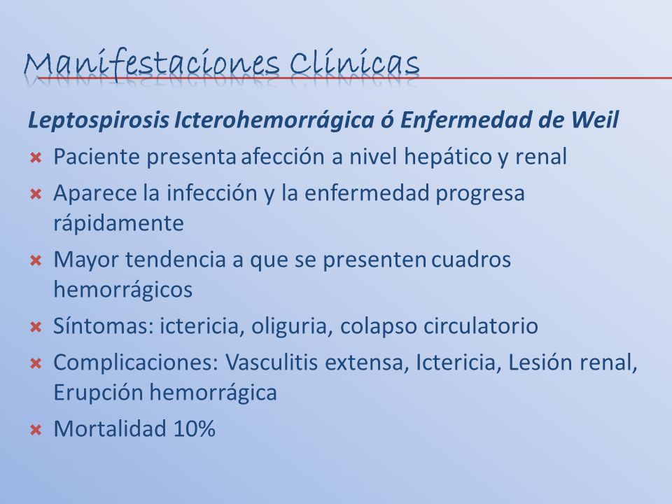 Leptospirosis Icterohemorrágica ó Enfermedad de Weil Paciente presenta afección a nivel hepático y renal Aparece la infección y la enfermedad progresa