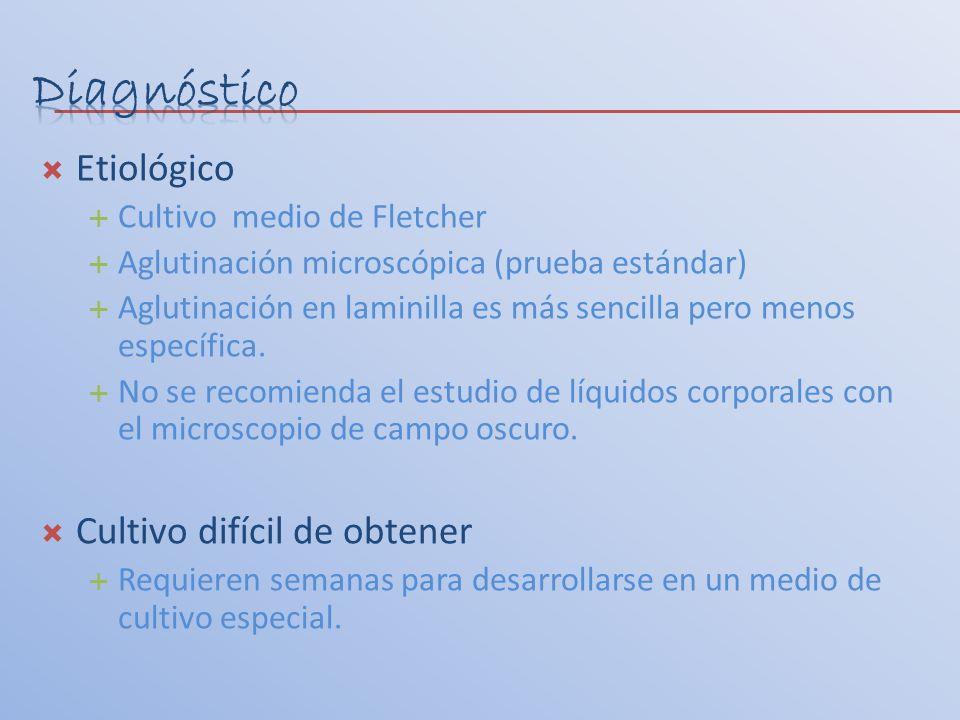 Etiológico Cultivo medio de Fletcher Aglutinación microscópica (prueba estándar) Aglutinación en laminilla es más sencilla pero menos específica. No s