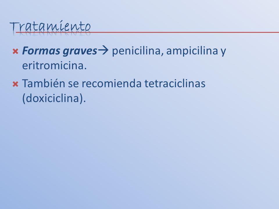 Formas graves penicilina, ampicilina y eritromicina. También se recomienda tetraciclinas (doxiciclina).