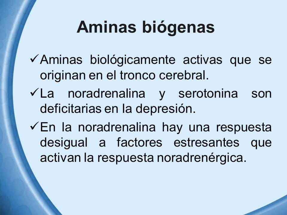 Aminas biógenas Aminas biológicamente activas que se originan en el tronco cerebral. La noradrenalina y serotonina son deficitarias en la depresión. E
