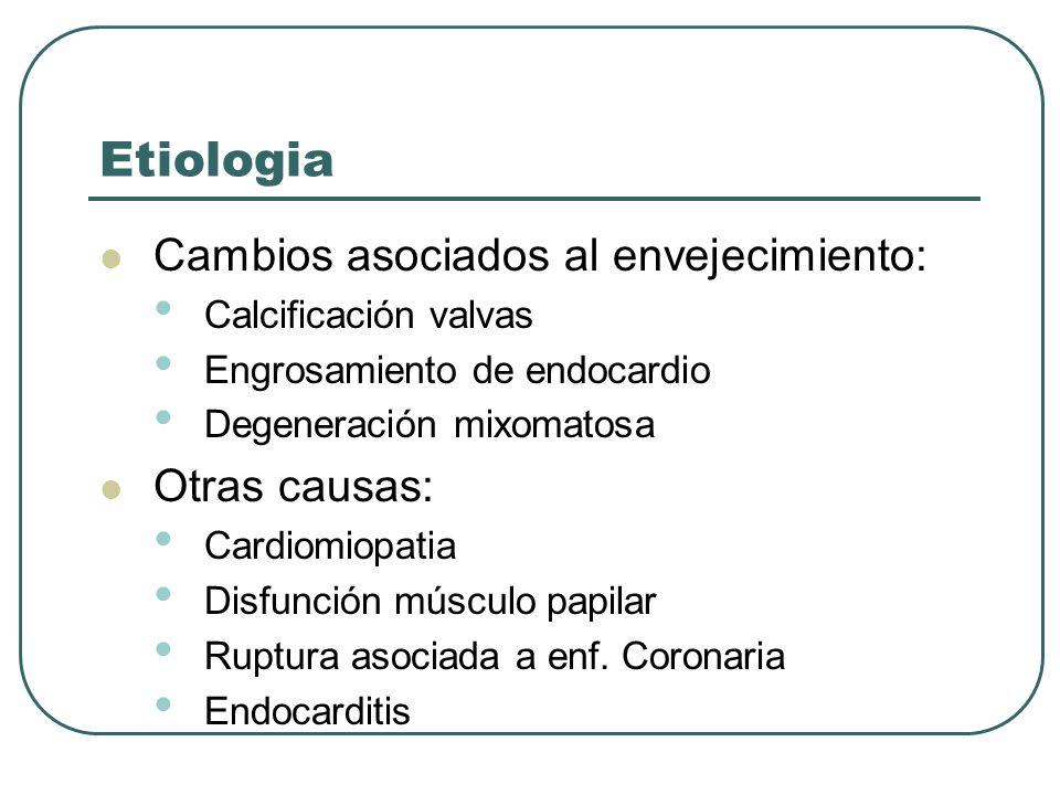 Etiologia Cambios asociados al envejecimiento: Calcificación valvas Engrosamiento de endocardio Degeneración mixomatosa Otras causas: Cardiomiopatia D
