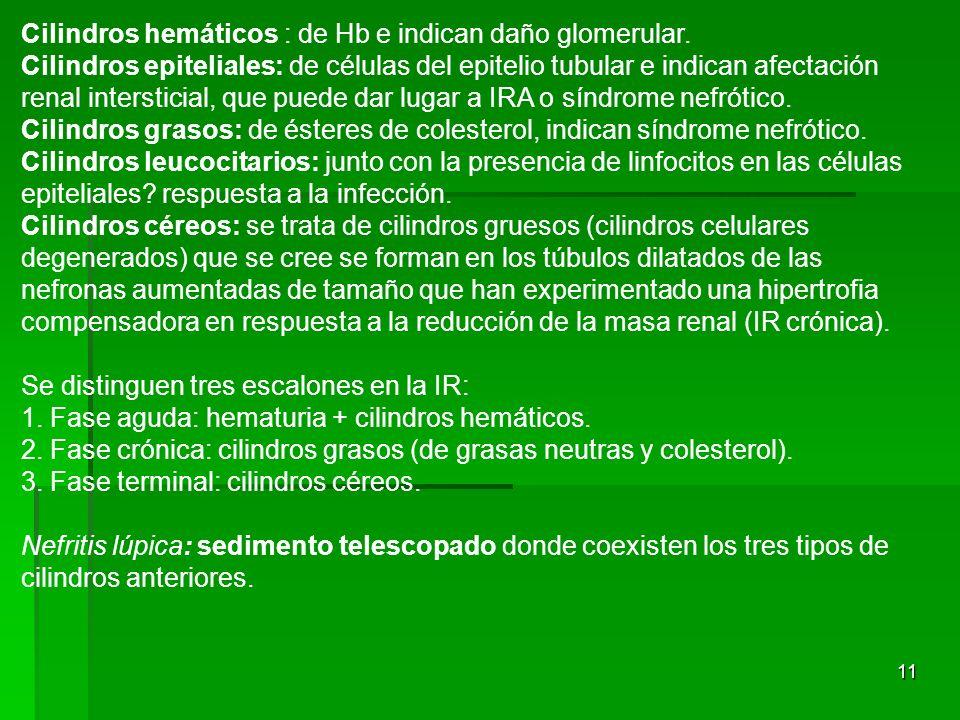 11 Cilindros hemáticos : de Hb e indican daño glomerular. Cilindros epiteliales: de células del epitelio tubular e indican afectación renal interstici