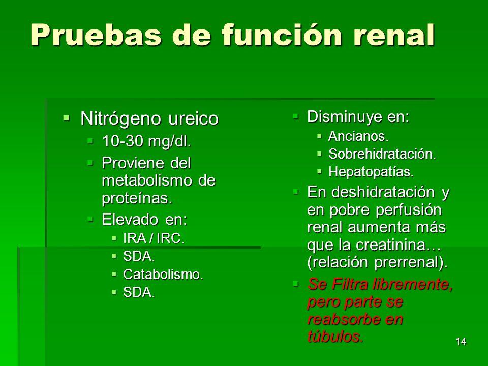 14 Pruebas de función renal Nitrógeno ureico Nitrógeno ureico 10-30 mg/dl. 10-30 mg/dl. Proviene del metabolismo de proteínas. Proviene del metabolism