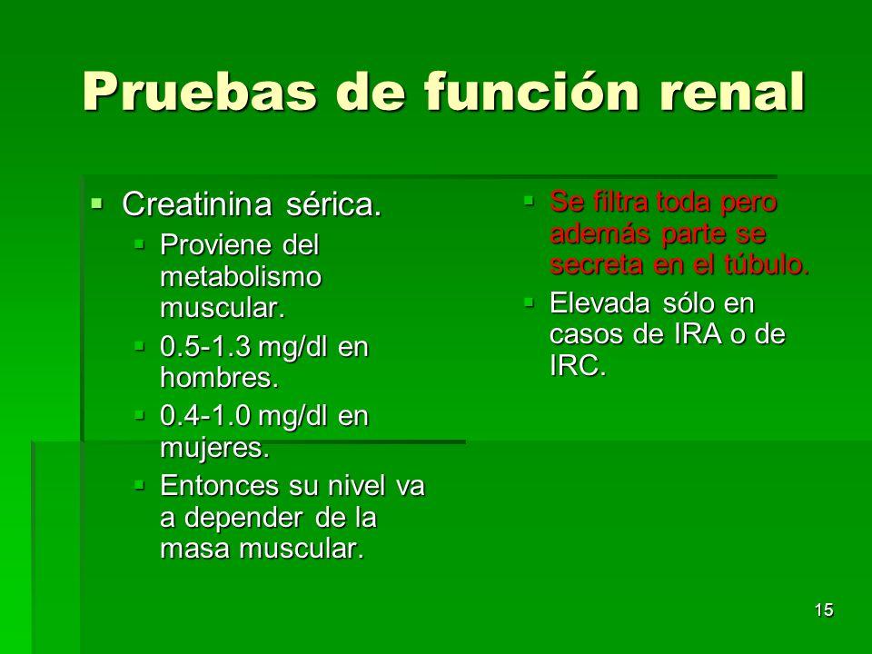 15 Pruebas de función renal Creatinina sérica. Creatinina sérica. Proviene del metabolismo muscular. Proviene del metabolismo muscular. 0.5-1.3 mg/dl