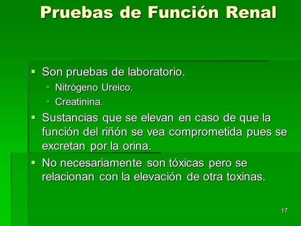 17 Pruebas de Función Renal Son pruebas de laboratorio. Son pruebas de laboratorio. Nitrógeno Ureico. Nitrógeno Ureico. Creatinina. Creatinina. Sustan