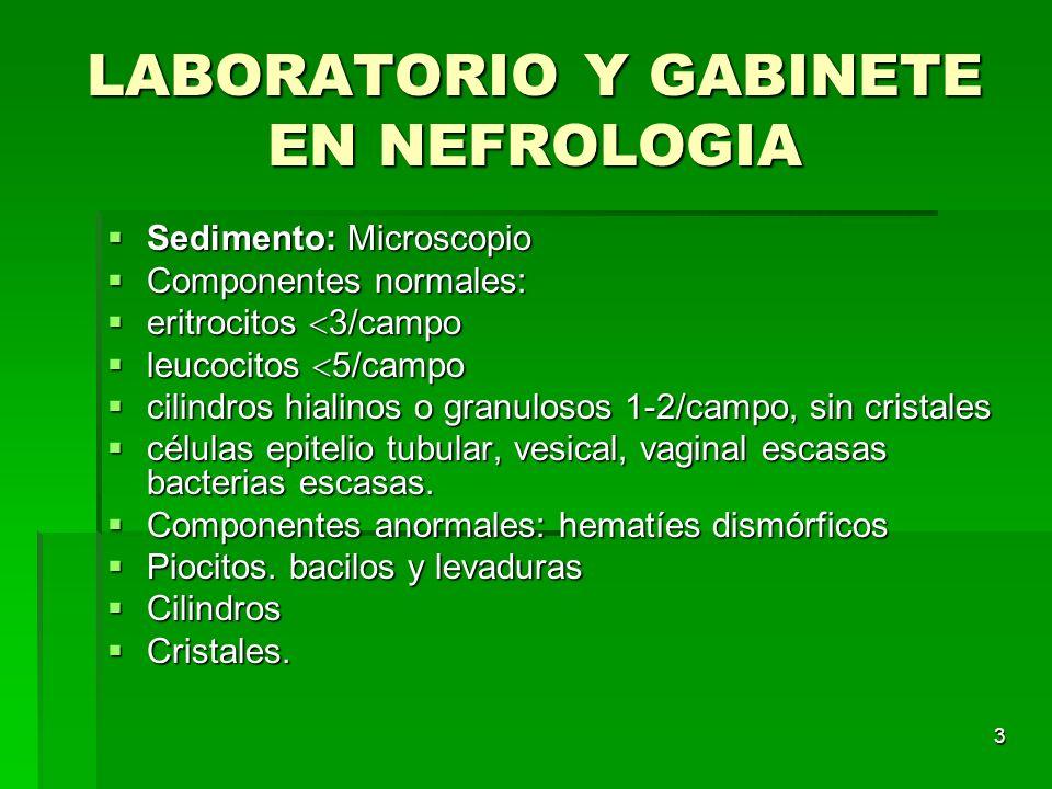 4 LABORATORIO Y GABINETE EN NEFROLOGIA Cilindros: se producen en el tubo colector gracias a la proteína de Tamm- Horsfall, desechos tubulares.