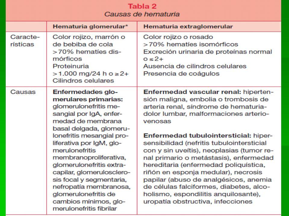 19 Pruebas de función renal Aclaramiento.Aclaramiento.
