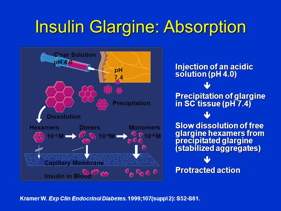 Insulin Glargine: Absorption Clear Solution pH 4.0 pH 7.4 Precipitation Dissolution Capillary Membrane Insulin in Blood HexamersDimersMonomers 10 -3 M